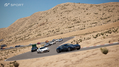 Willow_Springs_Big_Willow_Normal_02_1465877595.jpg