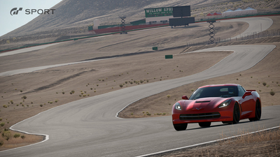 Willow_Springs_Big_Willow_Normal_03_1465877596.jpg